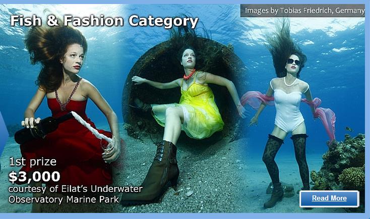צילומים מתחת לפני הים – HP Red Sea 2012 Eilat