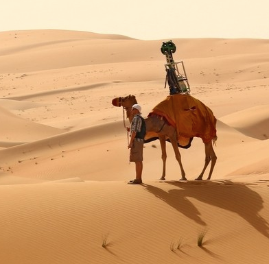 Google Street View via a Camel's Eye
