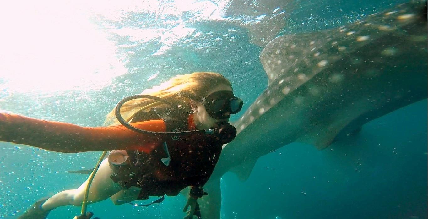 המסע שלי לארץ החופש – האיים המלדיביים – Maldives Adventure Travel